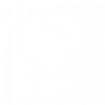 High Country Cones
